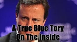 David Cameron Lib Dems and Tory Interview