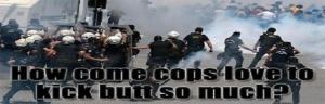 cops kick butt